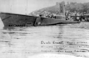 TR-1950 DUMLUPINAR